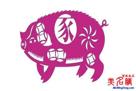 杨姓男宝宝猪年取名名字大全