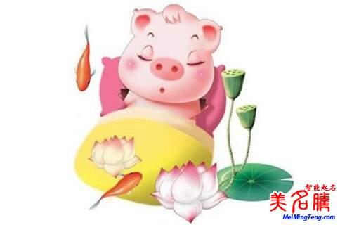 猪年图片可爱卡通