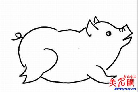 猪年男宝宝起名取名大全测名字2019