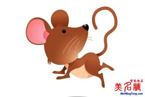 2020属鼠的男孩十一月/11月生起名大全
