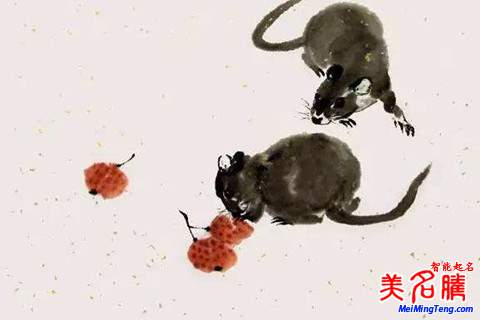 许姓男宝宝属鼠起名注意事项名字大全