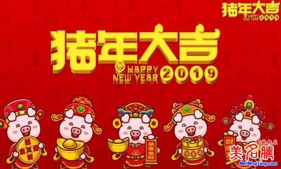 2019猪年宝宝起名技巧及好名字大全