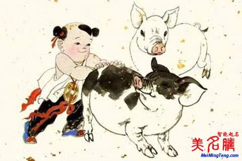 猪年男宝宝名字注意事项起名大全2019